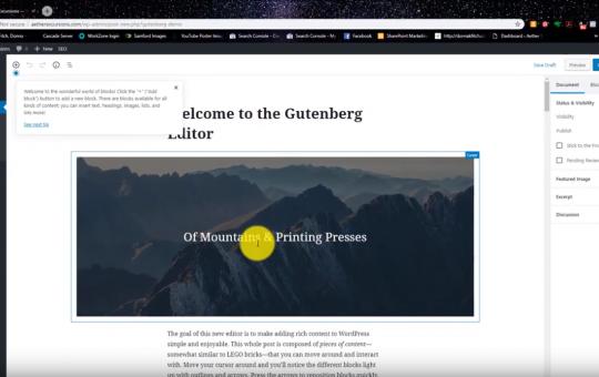 Screencasting: Switching Your WordPress Site to Gutenberg
